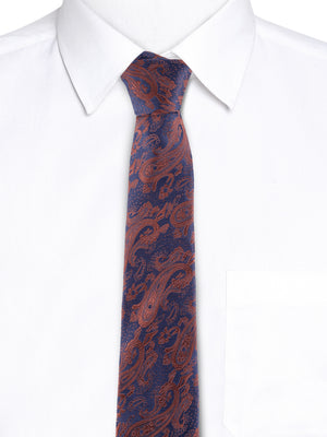 Zido Tie for Men TJQ243