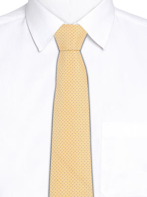 Zido Tie for Men TJQ279