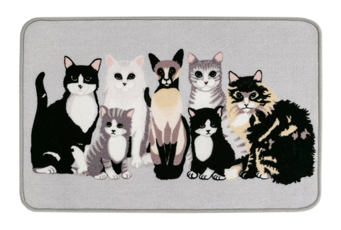 Kitties matto 50x80 cm