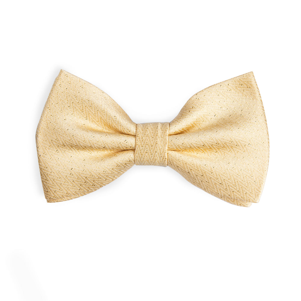 Beautiful Men's Yellow Bowtie