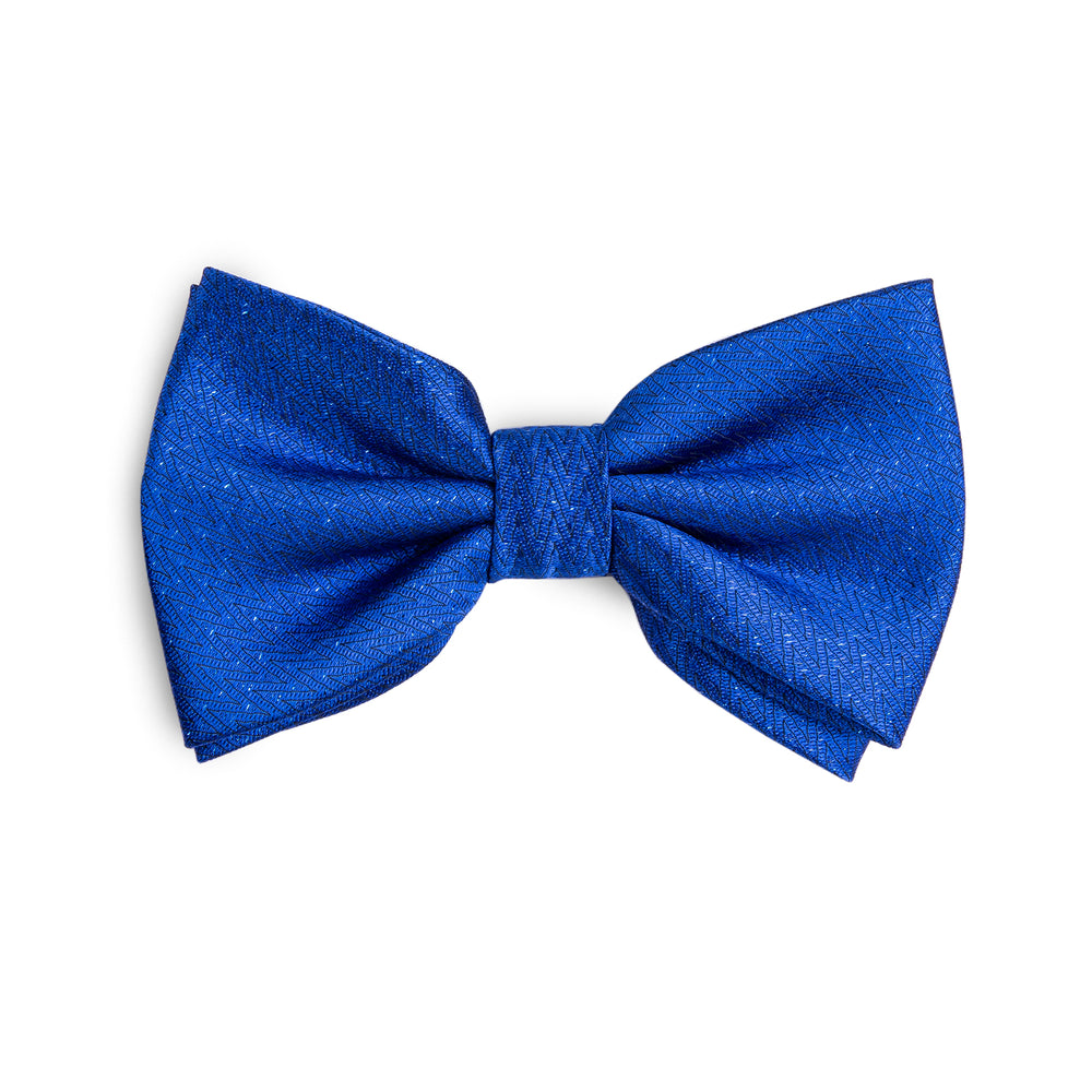 Attractive Men's Blue Bowtie