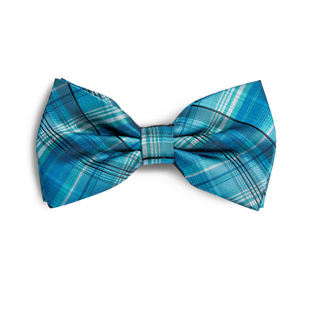 Beautiful Men's Blue Novelty BowTie