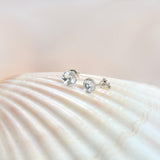 Swarovski crystals studs on the sea shell