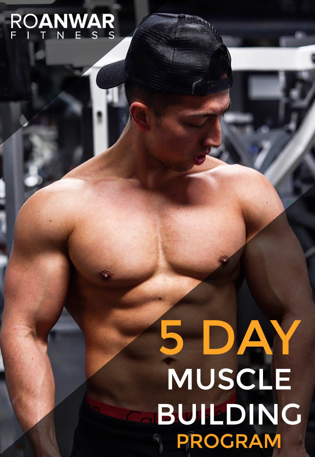 NEW - 5 Day 'Muscle Building' Program