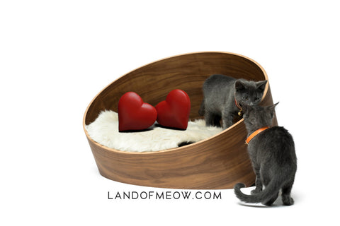 Cat bed with hearts