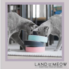Land of Meow - Cat Bowl Instagram