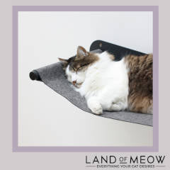 Land of Meow - Cat Swing Instagram