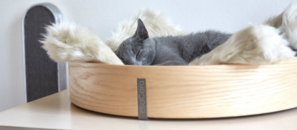 Land of Meow - Anello Cat Bed with Cat