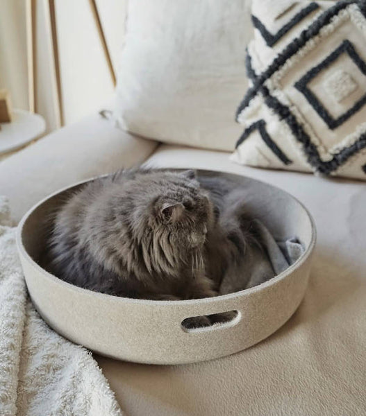 Land of Meow - MiaCara Cesto Bed with Cat
