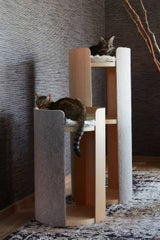 Land of Meow - MiaCara Torre Cat Trees with Cats