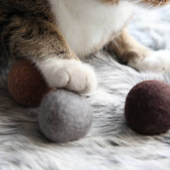 Land of Meow - Nose and Paw Felt Balls with Cat