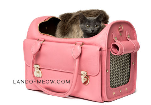 Land of Meow_Moshiqa Cat Carrier with Kitten