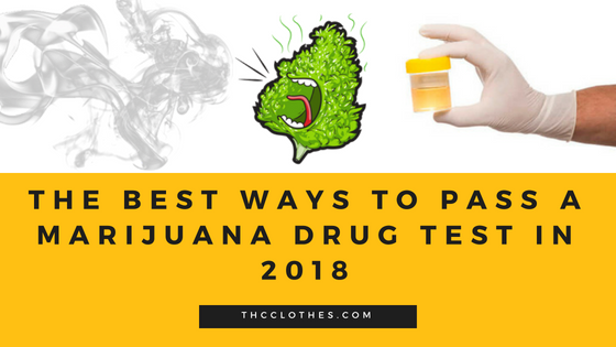 The Best Ways to Pass a Marijuana Drug Test in 2018