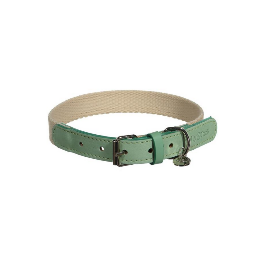Casual Minimal Collar - Green