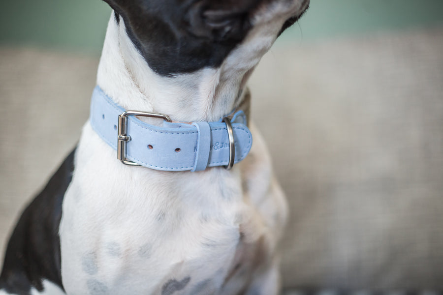 Denim Collar - Blue