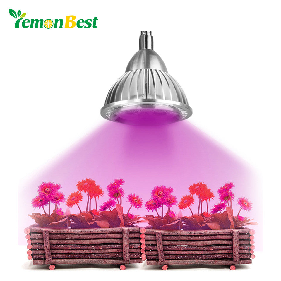 5W Clip Hydroponic Plant Growing Lights 5 LEDs LED Grow Light Bulb with Power Switch for Garden Greenhouse AC 85~265V