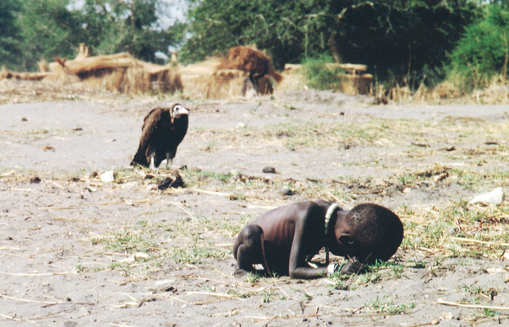 Photos reveal the unseen side of things… At first, it seems unethical. Who would actually shoot such a picture? A vulture stalking over a small starving child… The photo was taken in 1993 by a South African photojournalist Kevin Carter. At the time he had travelled to Sudan to picture and report the famine. The photographer was highly criticised for his lack of ethical attitude. Why photograph an endangered starving child, threatened by a vulture? And show it to the world? The photographer was standing next to the mother and took the picture at a specific angle. In reality, the vulture wasn't actually so close. And the child had her mother beside. Kevin Cartner raised such a public outrage that he later took his own life in 1994. This image is a Pulitzer Prize-winning image. As famous for its social impact, as it is the ethical issues it raised.