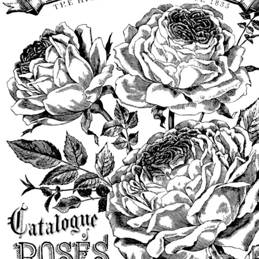 IOD Catalogue of Roses 24 x 33 Decor Transfer - Pen & Grey