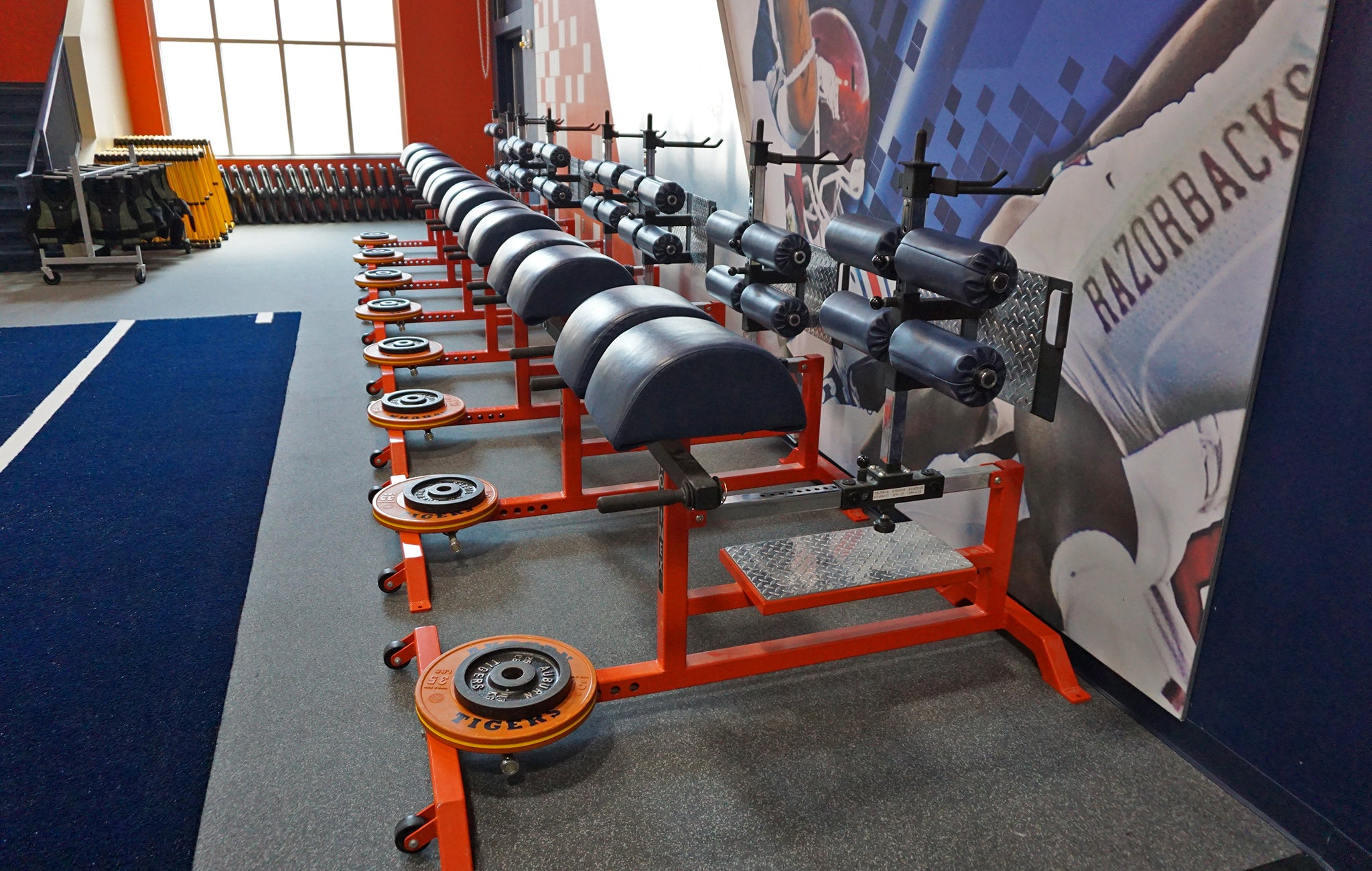 Auburn strength training