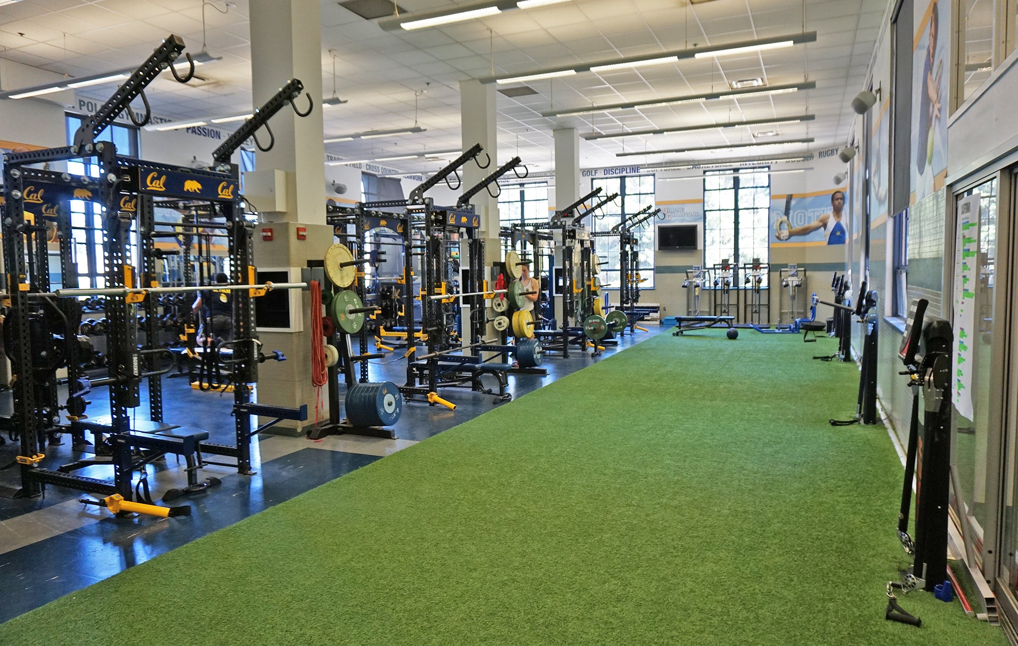 University of California Olympic Weight Room