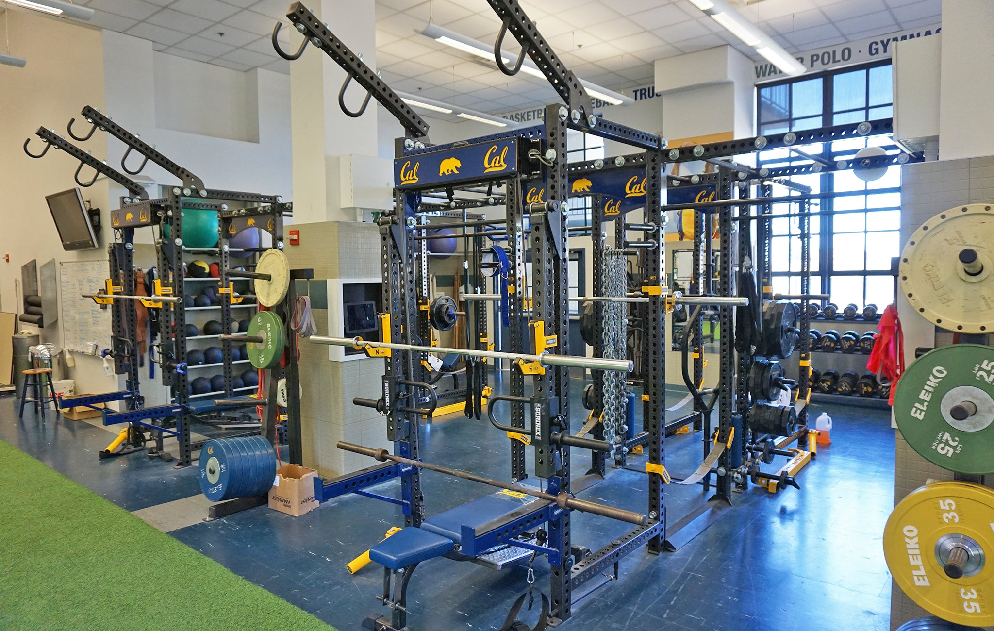 University of California strength and conditioning