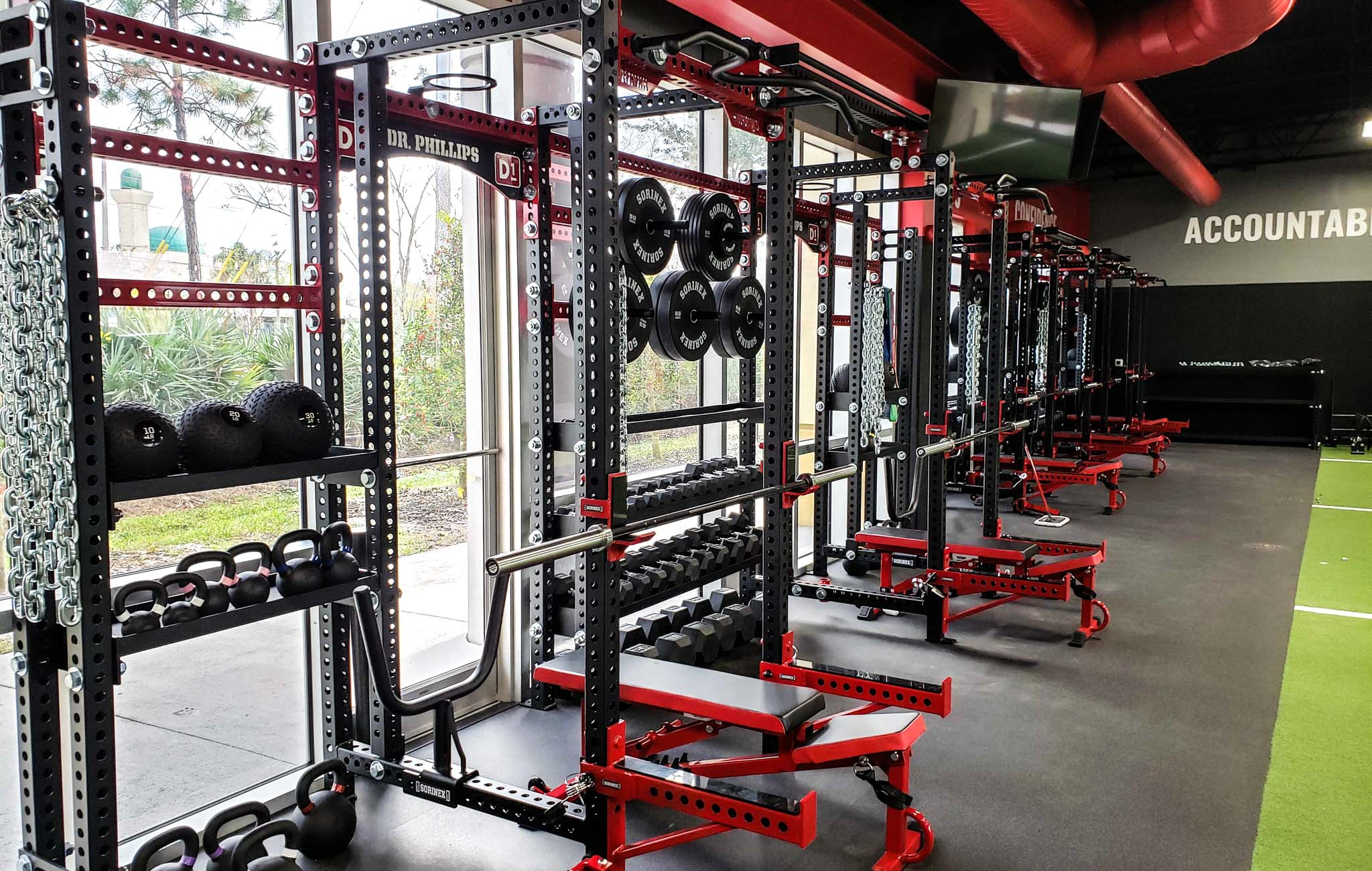 D1 Dr. Phillips power racks