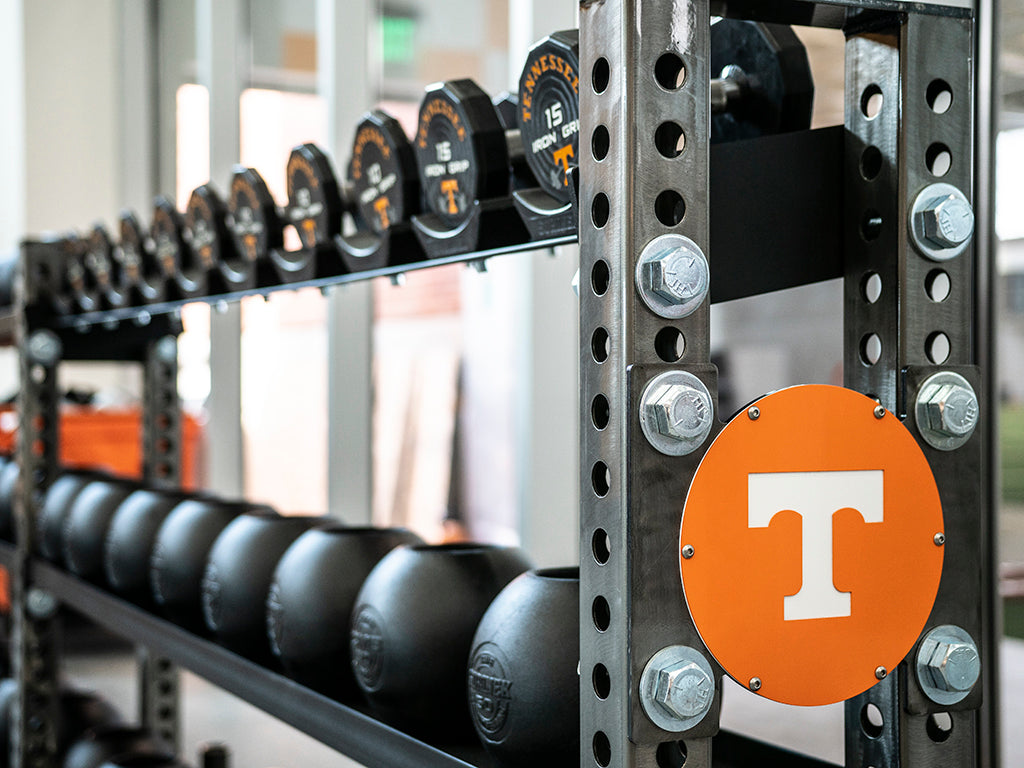 University of Tennessee Iron Bear