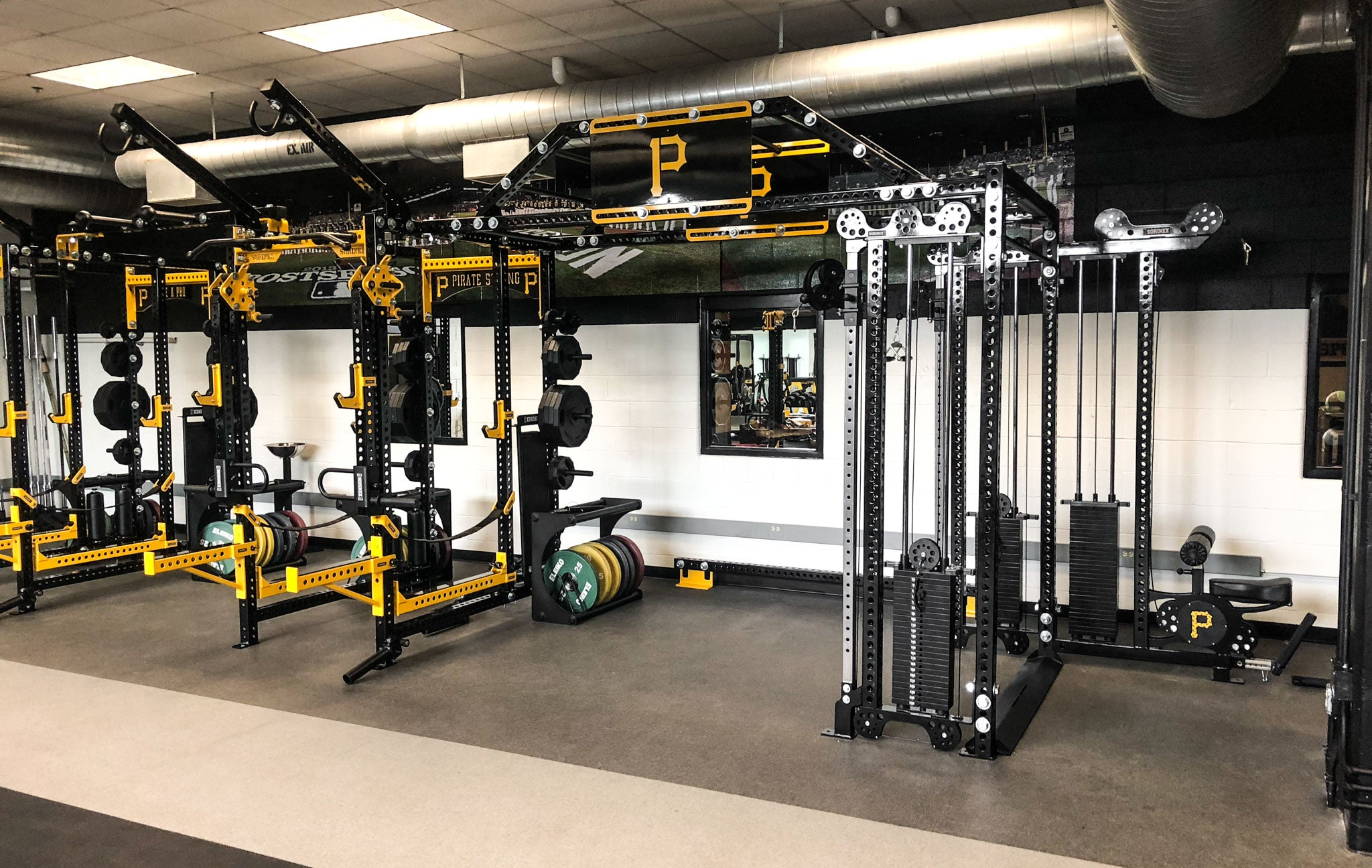 professional Baseball strength and conditioning