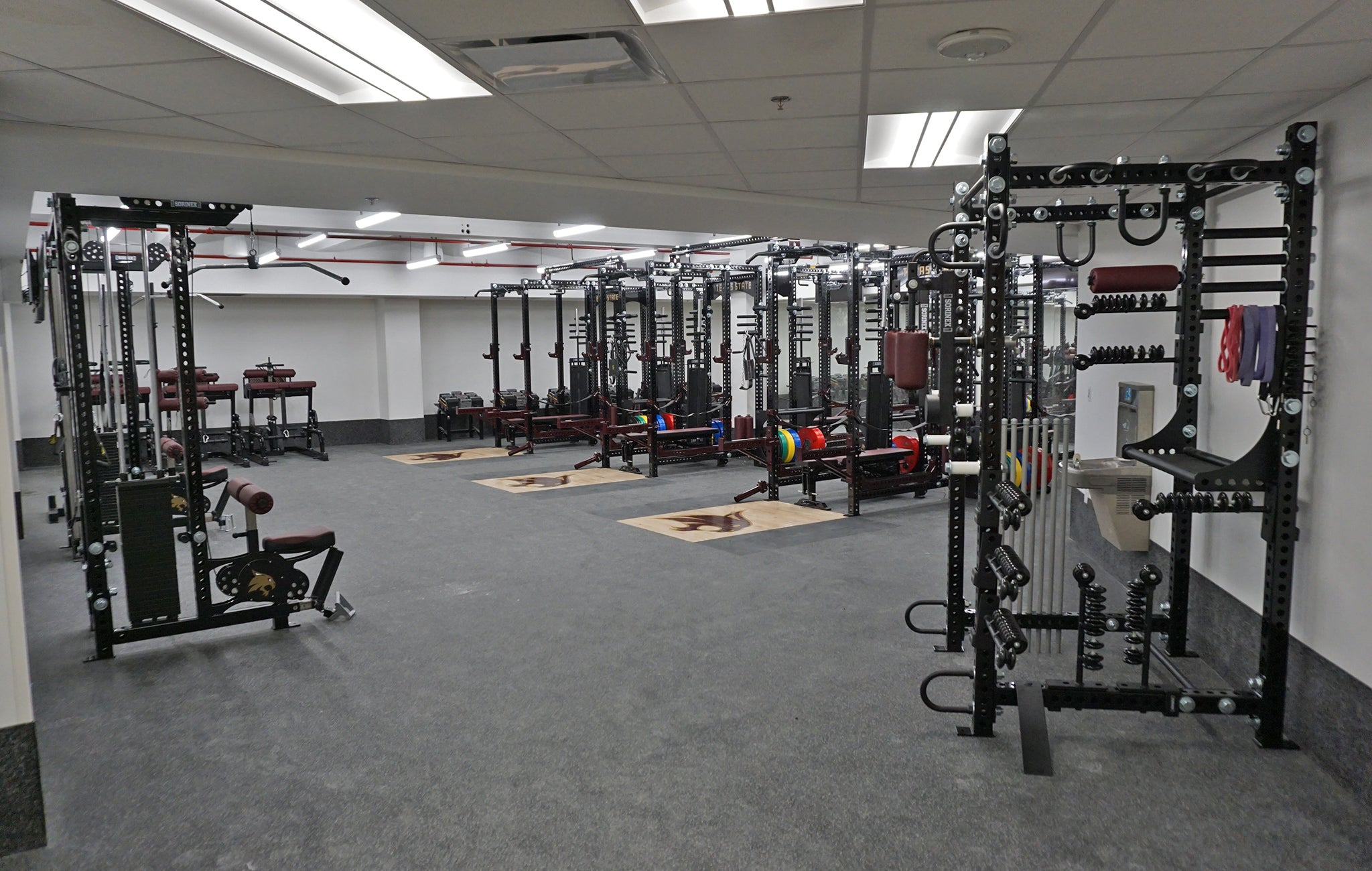 Texas State University Weight Room