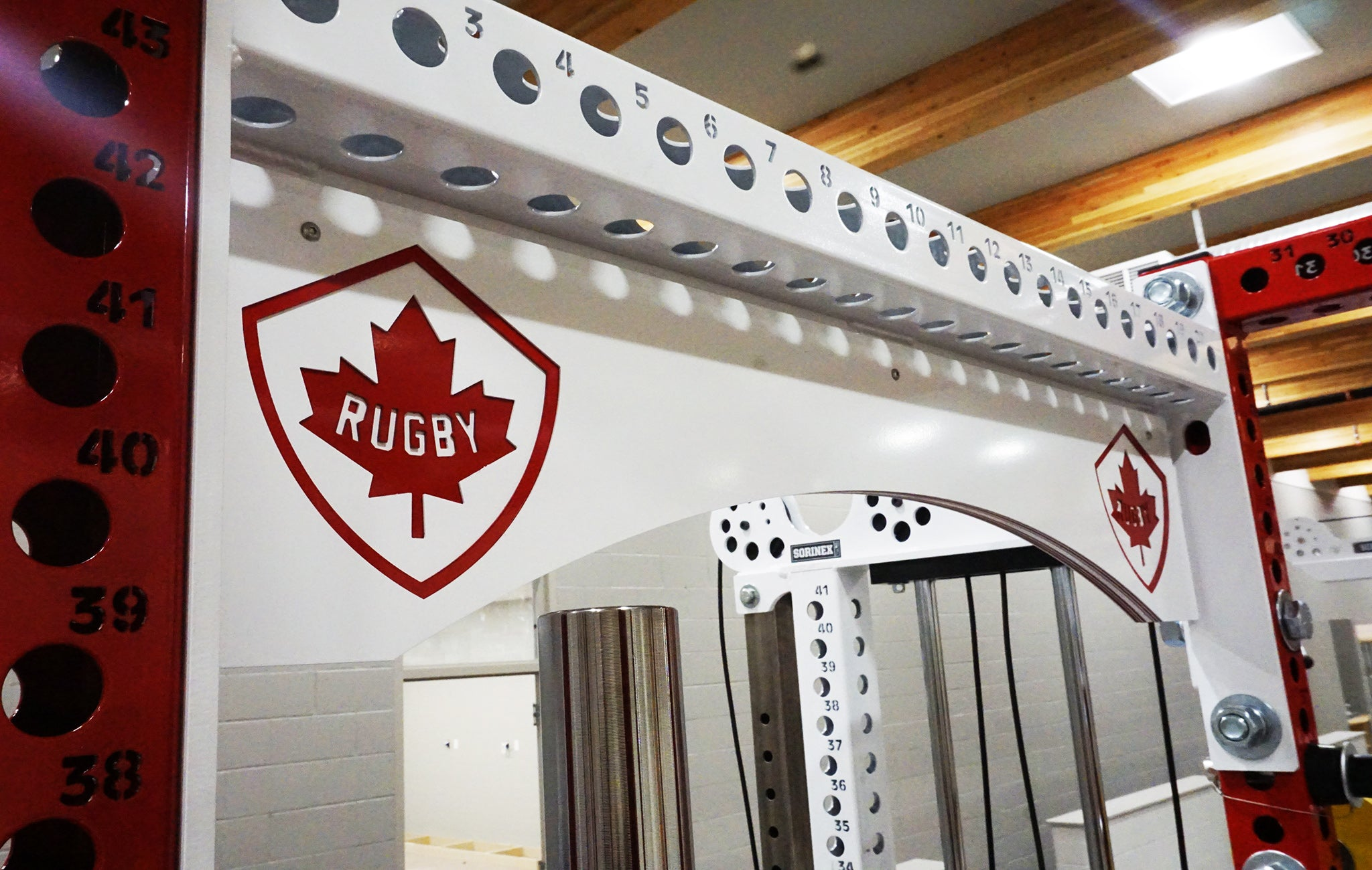 Professional rugby strength training facilities
