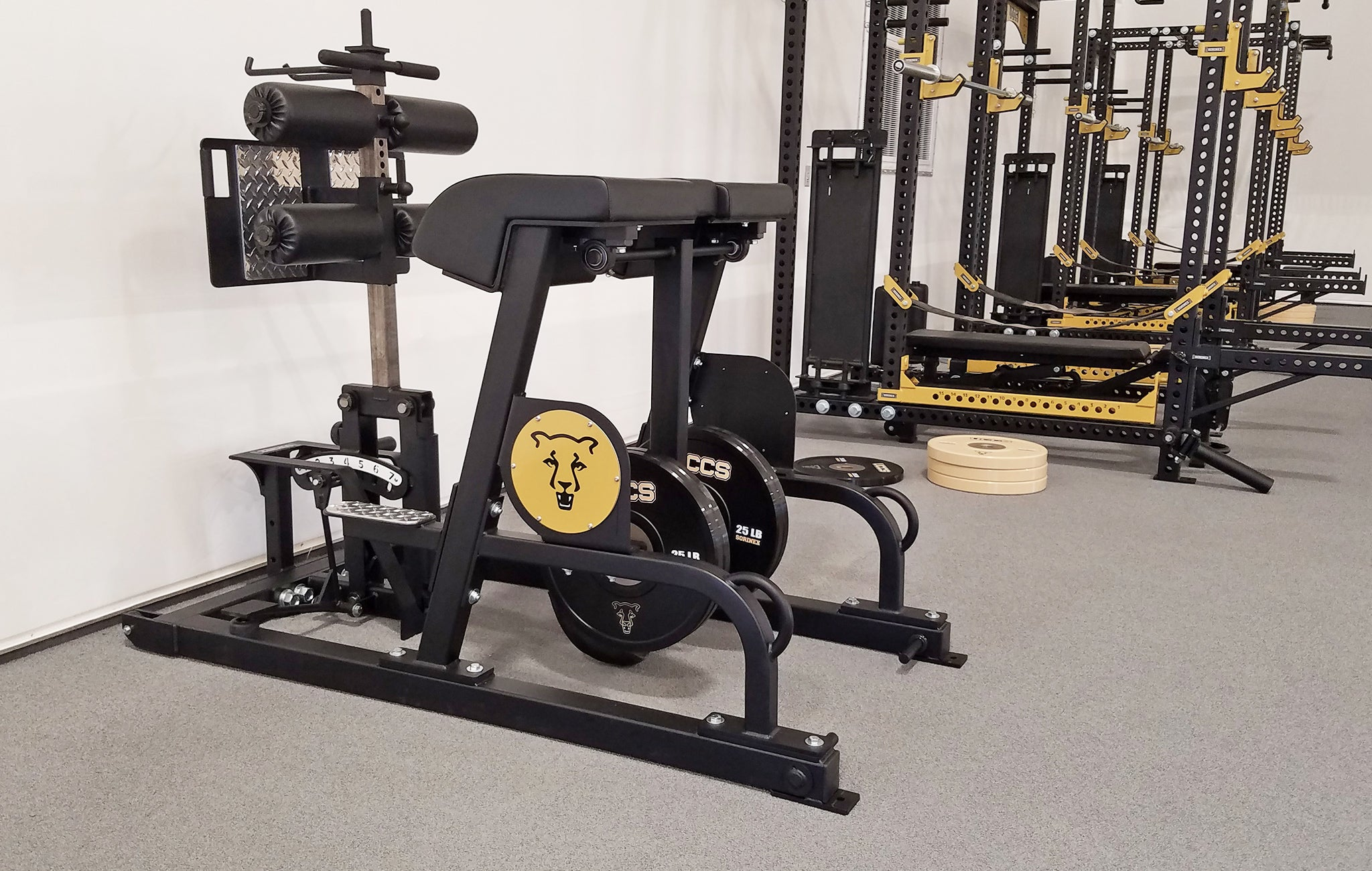 University of colorado strength training