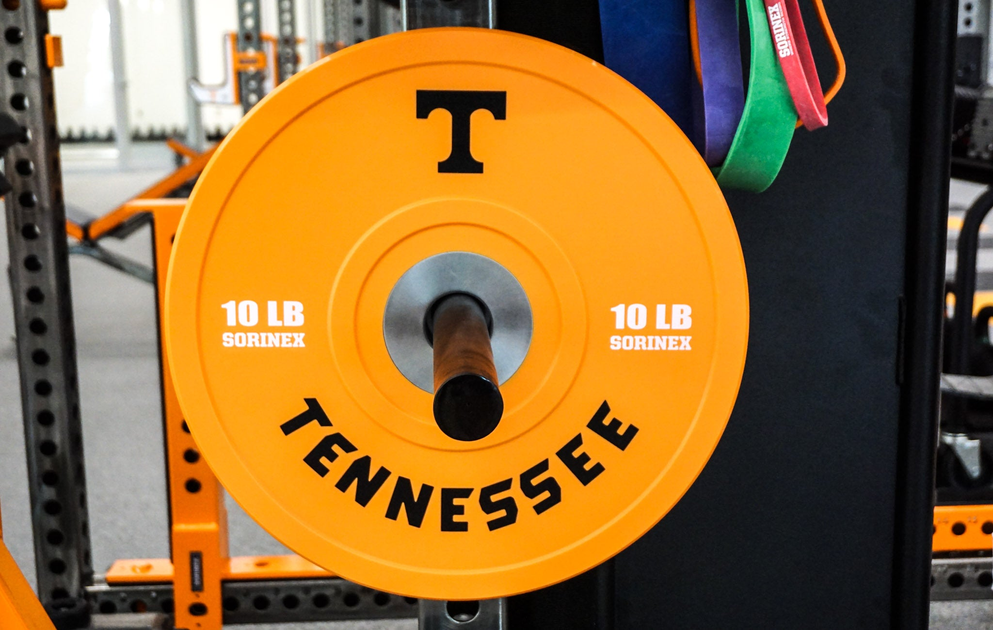 Tennessee custom bumpers