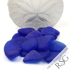 Cobalt Blue Sea Glass with Sand Dollar