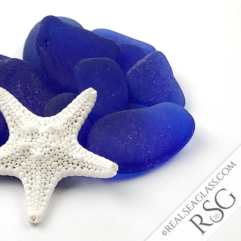 Cobalt Blue Sea Glass with Starfish