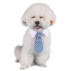 DOGGY NECKTIE