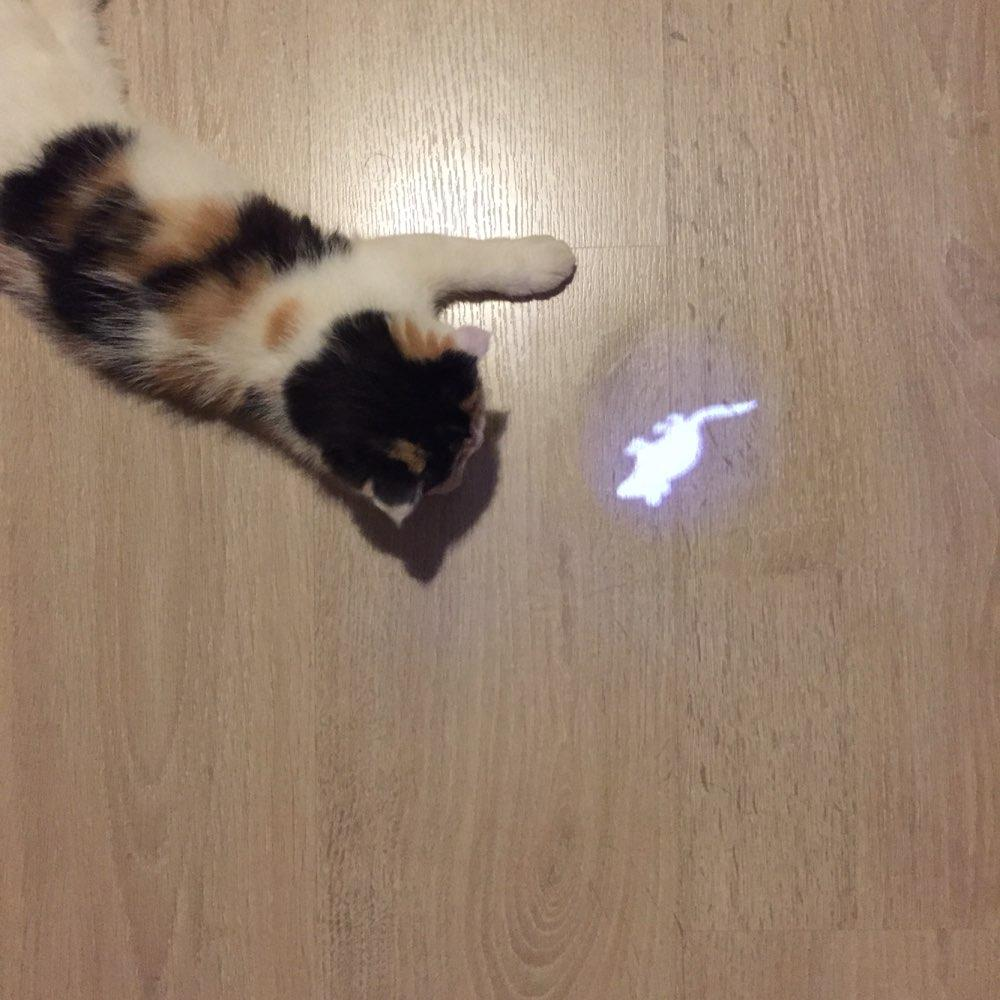 Funny LED Pointer Cat Toy