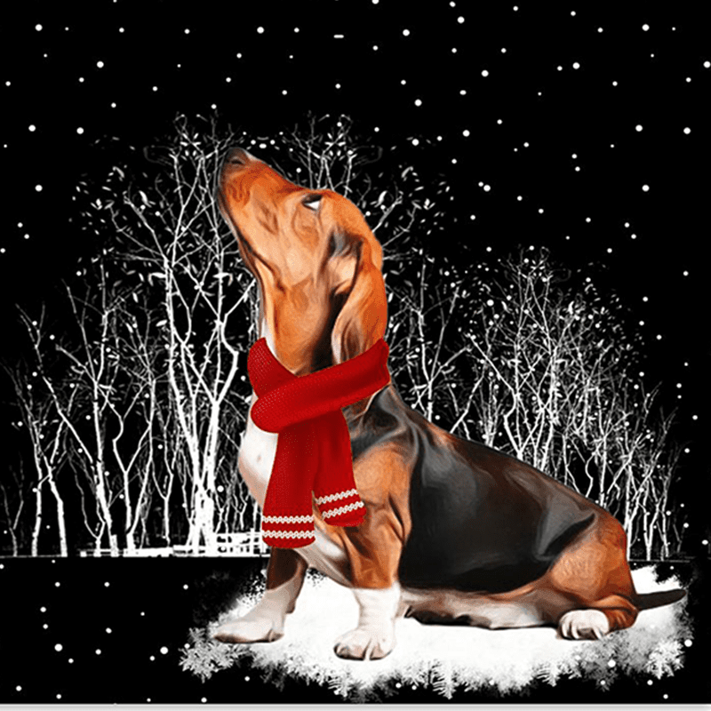 Basset Hound™ COMBO SILVER FOR WINNERS  fb101