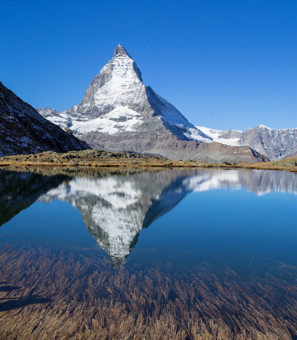 The Power of Posture on Immunity: Be a Quiet Mountain