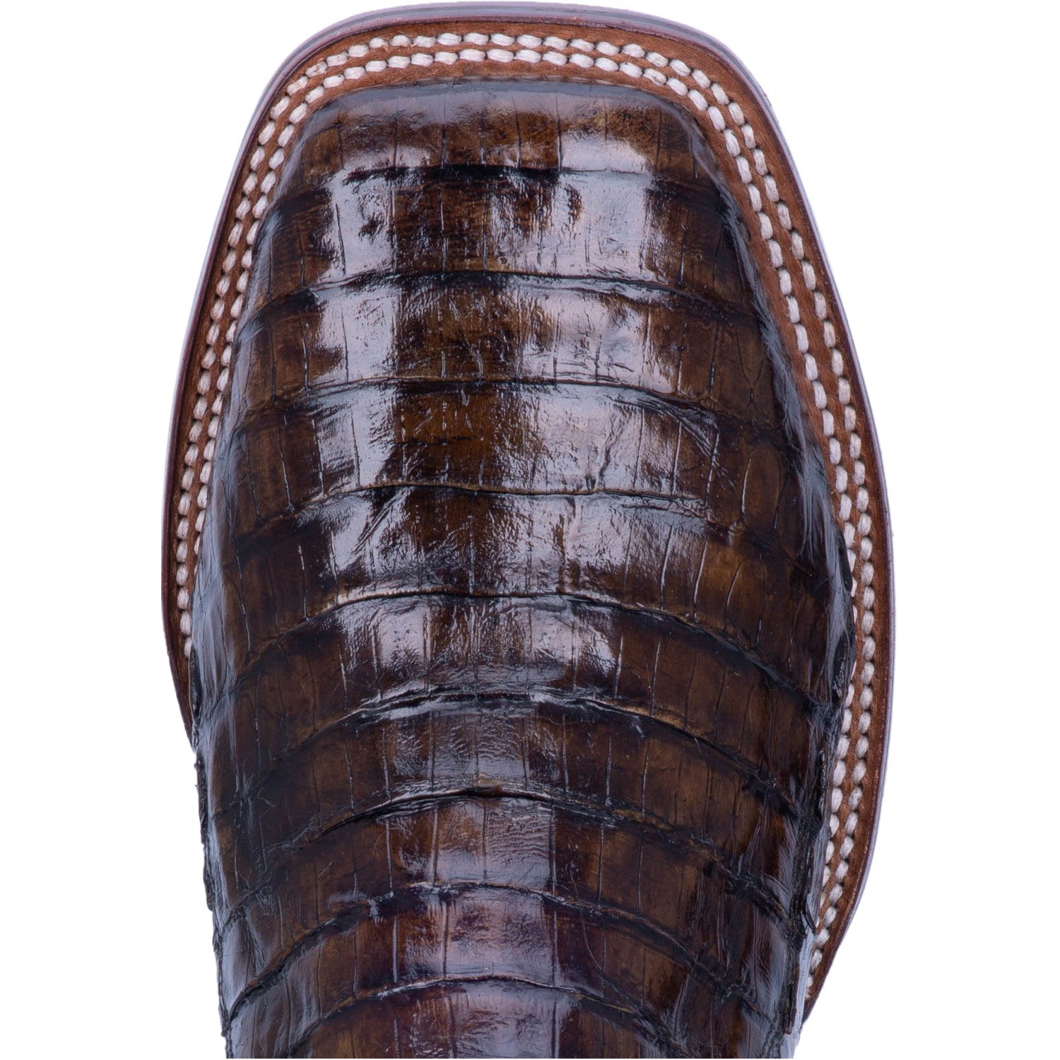 KINGSLY CAIMAN BOOT 5547780046890