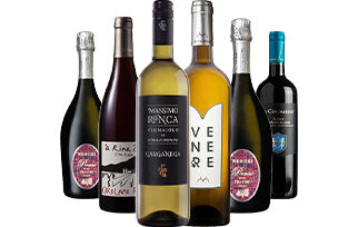 Discover Italy | Wine Case with a Digital Wine Expert