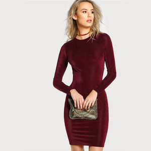 Claire - Lace Trimmed Pencil Dress