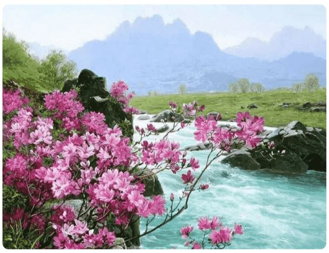 Blossomed Flowers and A River - LOVIELO