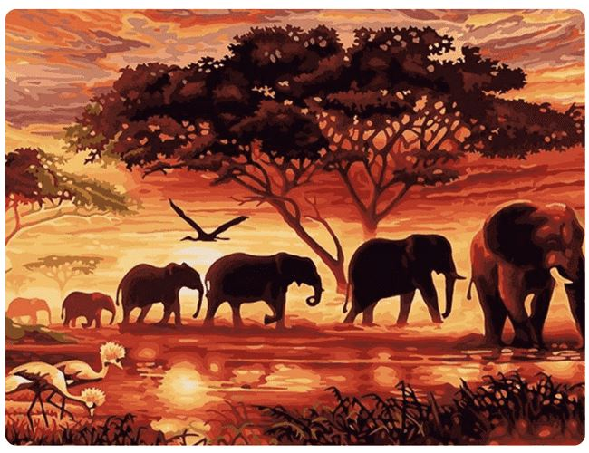 Elephants at Sunset - LOVIELO