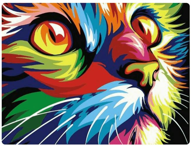 Multicolor Cat - LOVIELO