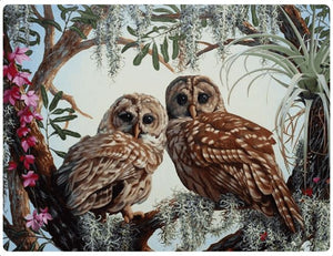 A Beautiful Couple of Owls - LOVIELO