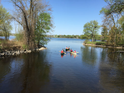 Adult Paddling in the Evening - ORCKA Level 2 - July 2-3, 2020