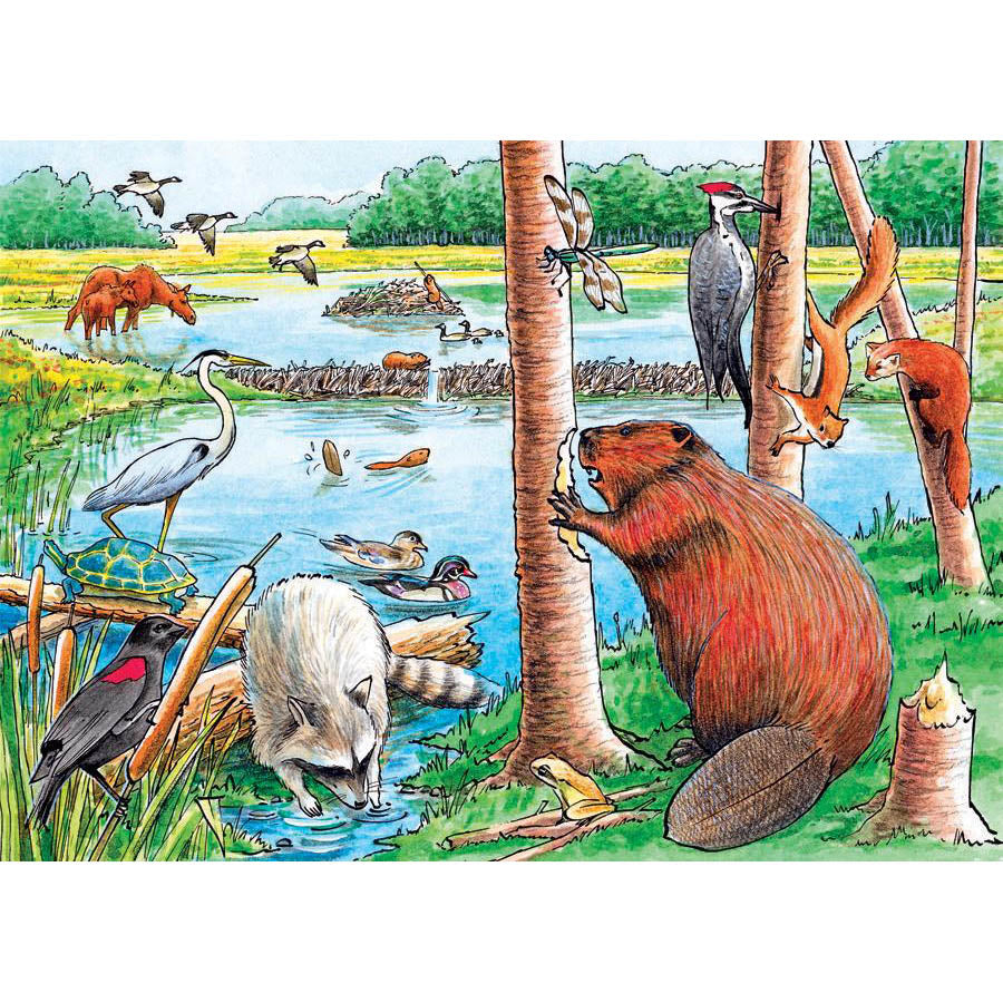 The Beaver Pond Tray Puzzle