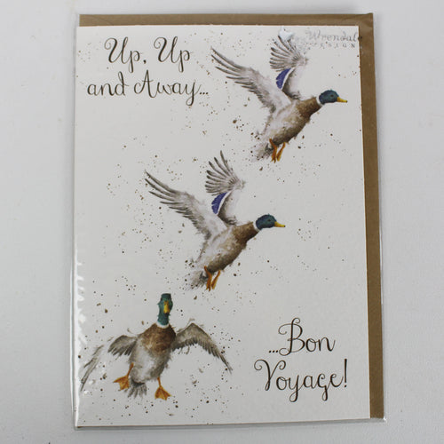Up and Away Card