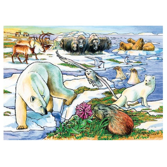 Arctic Adventures 35pc Puzzle