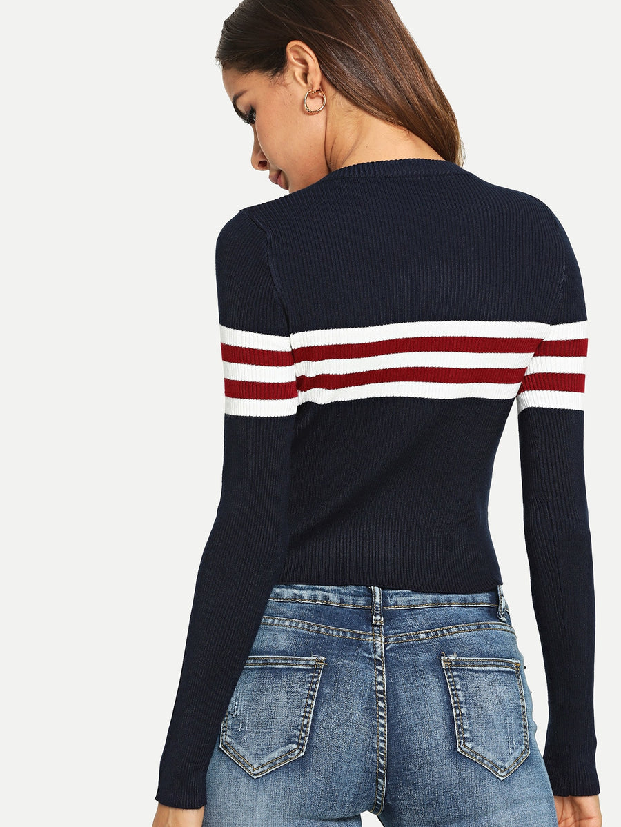 Stripe Panel Crop Ribbed Jumper